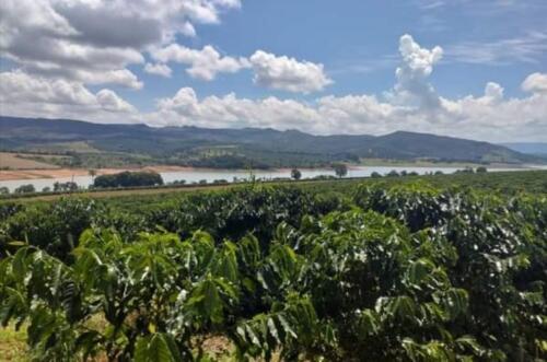 Fazenda em Lago de Furnas