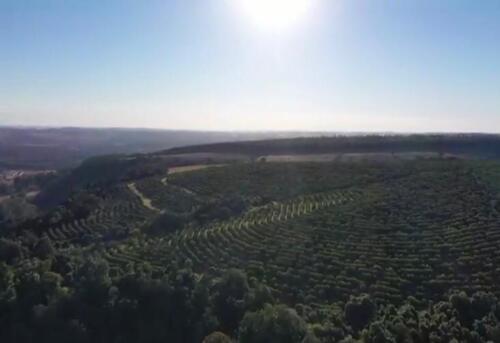 Fazenda Região de Marília SP (15)
