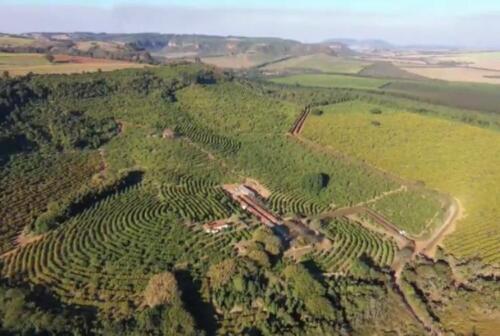 Fazenda Região de Marília SP (16)