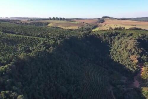 Fazenda Região de Marília SP (18)