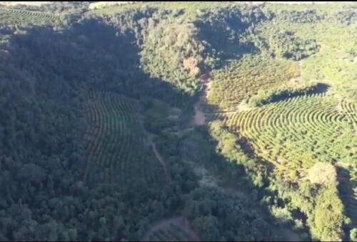 Fazenda Região de Marília SP (19)