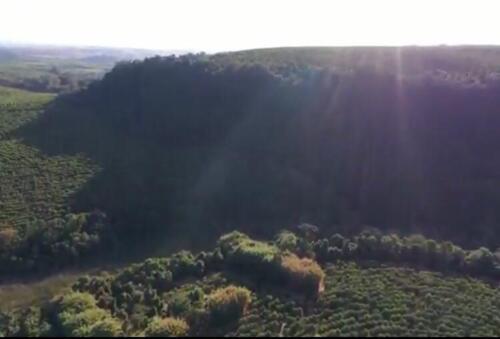 Fazenda Região de Marília SP (22)