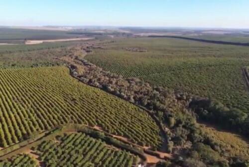 Fazenda Região de Marília SP (24)