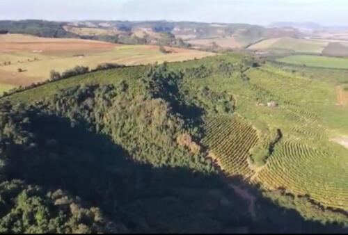 Fazenda Região de Marília SP (8)